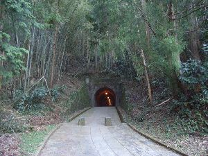 Old tunnel.JPG